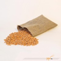 Солод Wheat Malt MD пшеничный 1кг (Бельгия)